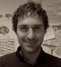 Dr Alessandro Tomassini's picture